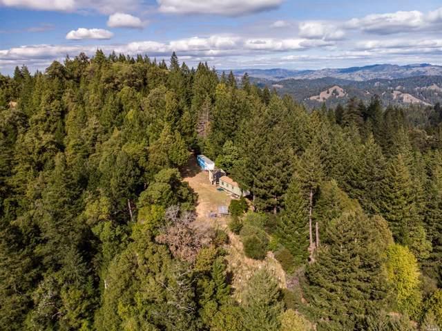 0 Fish Rock Road, Yorkville, CA 95494 (#22009177) :: Intero Real Estate Services