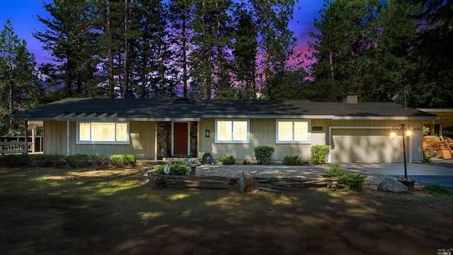 16101 Paradise Road, Pioneer, CA 95666 (#22009903) :: W Real Estate | Luxury Team
