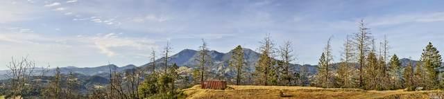 160 Franz Valley School Road, Calistoga, CA 94515 (#22010166) :: W Real Estate   Luxury Team