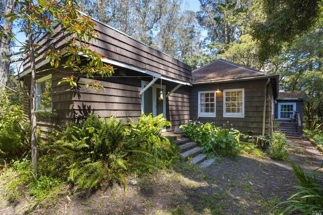 730 Horseshoe Hill Road, Bolinas, CA 94924 (#22011327) :: Golden Gate Sotheby's International Realty