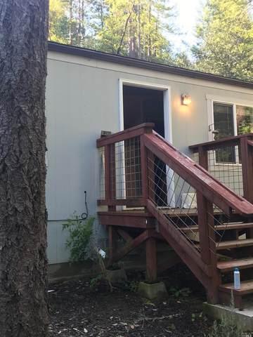 15399 Drake Road, Guerneville, CA 95446 (#22011400) :: Intero Real Estate Services