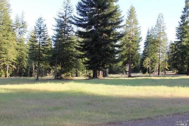 0 Van Zandt Road, Philo, CA 95466 (#22011456) :: Intero Real Estate Services