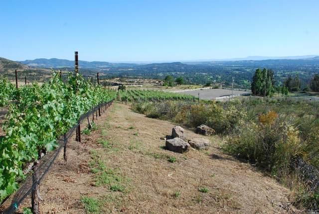 2520 Atlas Peak Road, Napa, CA 94558 (#22011525) :: W Real Estate | Luxury Team