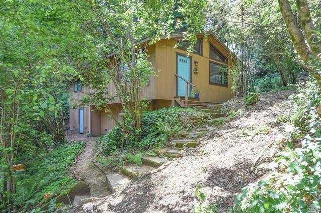 27 Hampton Road, Camp Meeker, CA 95419 (#22011846) :: W Real Estate   Luxury Team