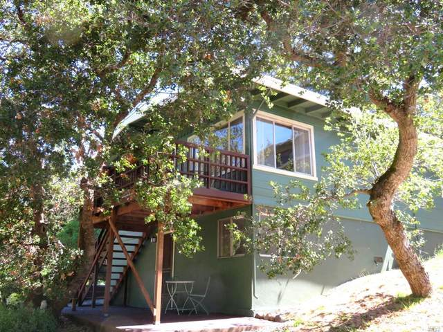 319 Holly Avenue, Novato, CA 94945 (#22011892) :: Lisa Perotti | Corcoran Global Living
