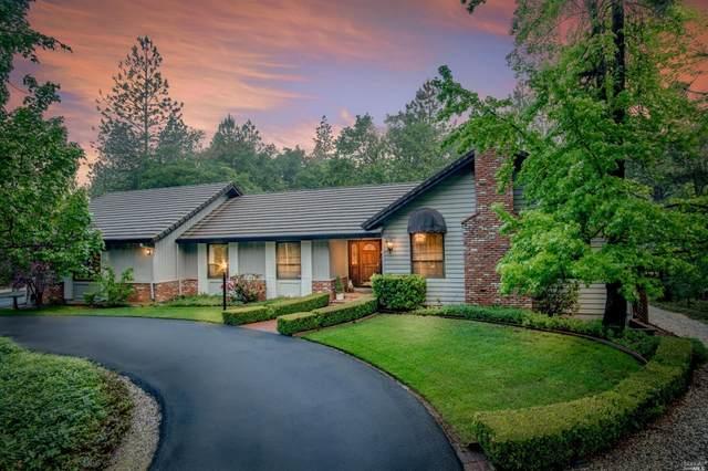 14178 Bar Ela Ranch Road, Grass Valley, CA 95949 (#22011904) :: Rapisarda Real Estate