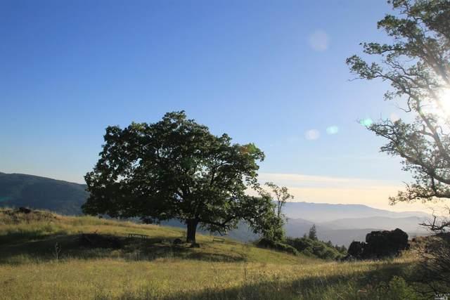 0 Mendocino Pass Road, Covelo, CA 95428 (#22012911) :: RE/MAX GOLD