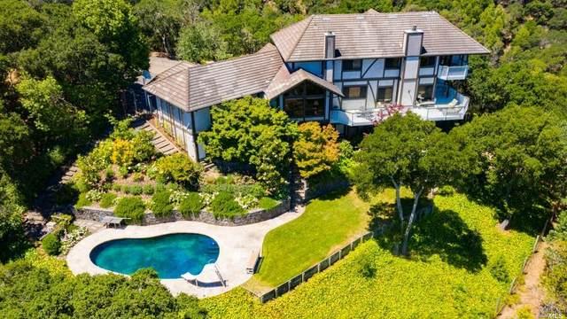 125 Thunderbird Court, Novato, CA 94949 (#22013905) :: Rapisarda Real Estate