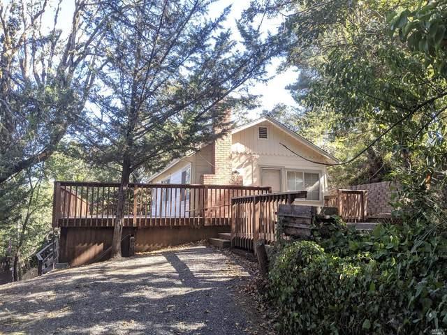 9478 Rio Vista Road, Forestville, CA 95436 (#22014188) :: HomShip