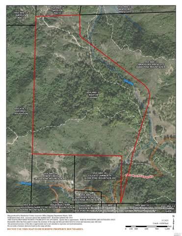 0 Pine Mountain Road, Hopland, CA 95449 (#22014675) :: Rapisarda Real Estate