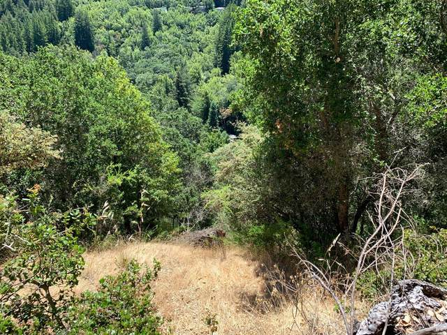 0 Pine Drive, Fairfax, CA 94930 (#22015202) :: Team O'Brien Real Estate