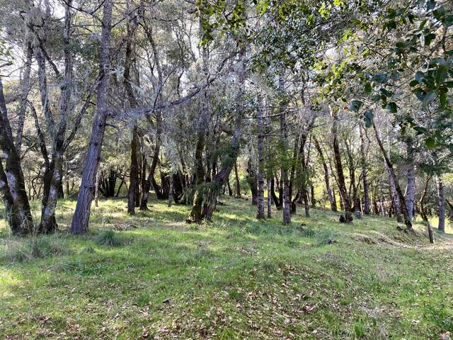 18750 Mountain View Road, Boonville, CA 95415 (#22015463) :: Lisa Perotti   Corcoran Global Living