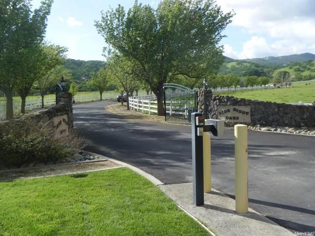 3523 Blue Mountain Drive, Fairfield, CA 94534 (#22015565) :: Team O'Brien Real Estate