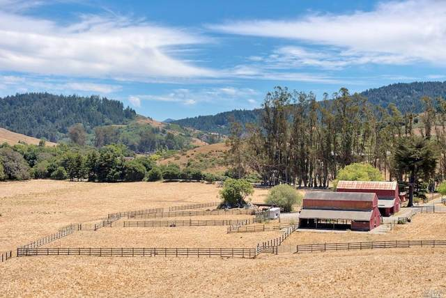 100 Road To Ranches, Nicasio, CA 94946 (#22015576) :: Intero Real Estate Services