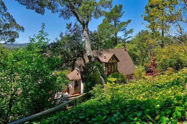 103 Shelley Drive, Mill Valley, CA 94941 (#22015911) :: Intero Real Estate Services