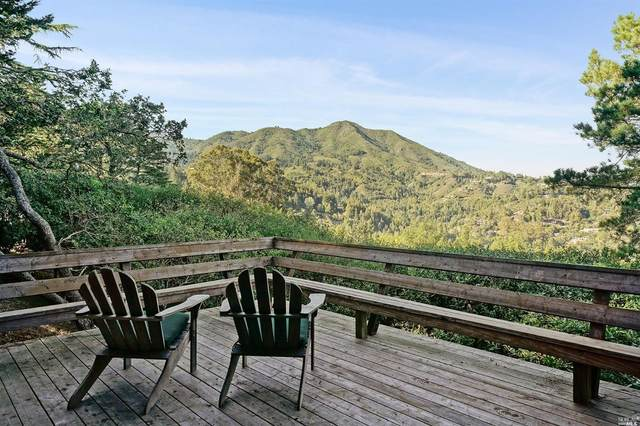 388 Edgewood Avenue, Mill Valley, CA 94941 (#22015993) :: Intero Real Estate Services