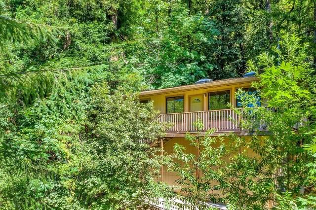 10985 Terrace Drive, Forestville, CA 95436 (#22016035) :: HomShip