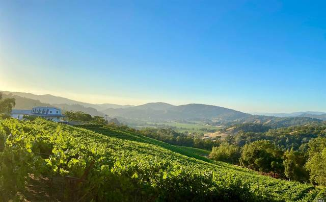5410 State Highway 128 Highway, Napa, CA 94558 (#22017846) :: Golden Gate Sotheby's International Realty