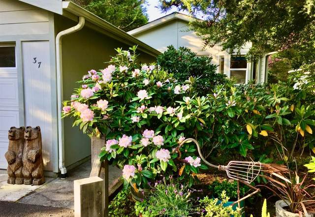 Little River, CA 95456 :: Lisa Perotti | Corcoran Global Living