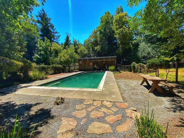 17828 Neeley Road, Guerneville, CA 95446 (#22018058) :: RE/MAX GOLD