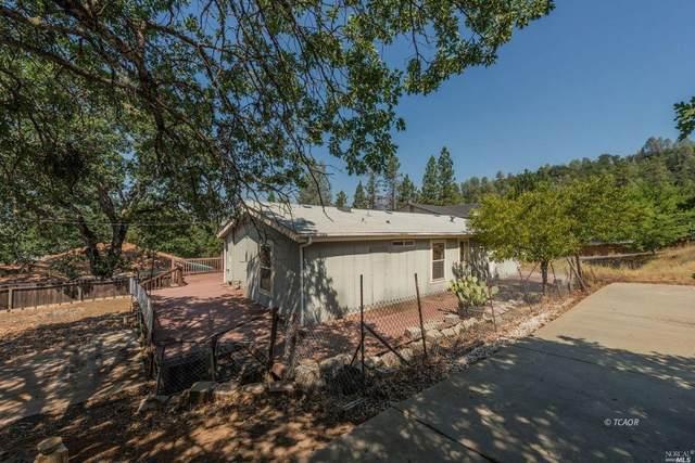 181 Pioneer Lane, Weaverville, CA 96093 (#22018074) :: Golden Gate Sotheby's International Realty