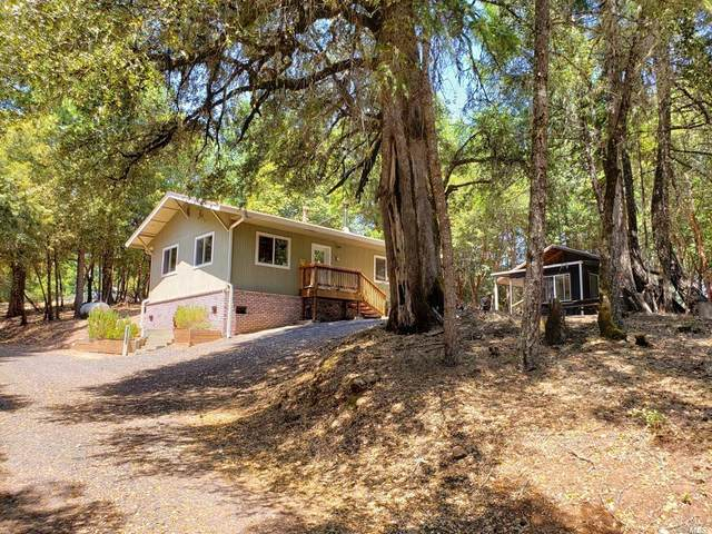 36193 Covelo Road, Willits, CA 95490 (#22018134) :: RE/MAX GOLD