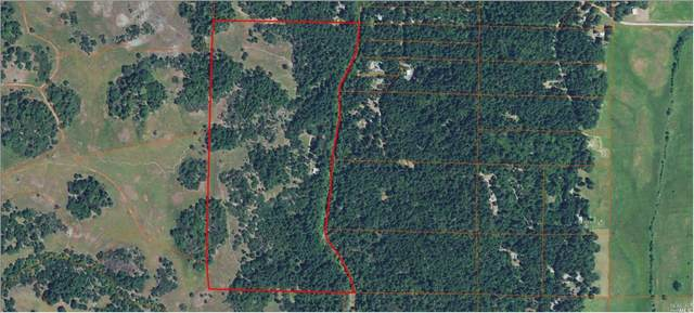 Laytonville, CA 95454 :: W Real Estate | Luxury Team