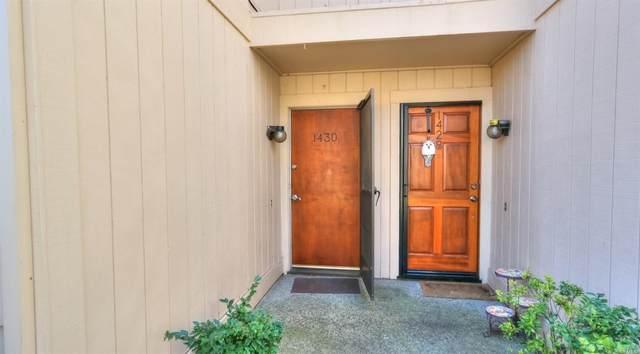 1430 Elm Drive, Novato, CA 94945 (#22018614) :: Rapisarda Real Estate