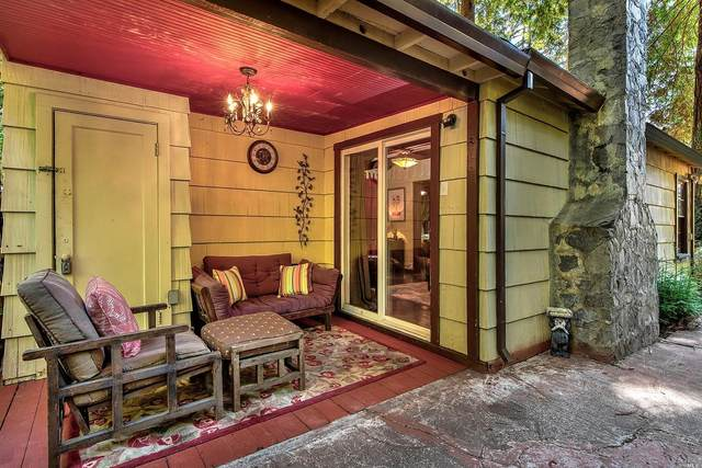19390 Pine Glade Road, Guerneville, CA 95446 (#22018632) :: RE/MAX GOLD