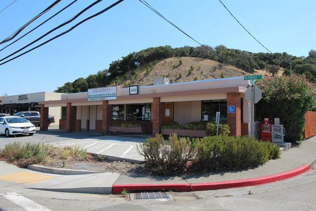 4200 Old Redwood Highway, San Rafael, CA 94903 (#22018699) :: Hiraeth Homes
