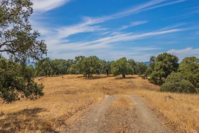 23800 Big Rock Road, Yorkville, CA 95494 (#22019703) :: Intero Real Estate Services