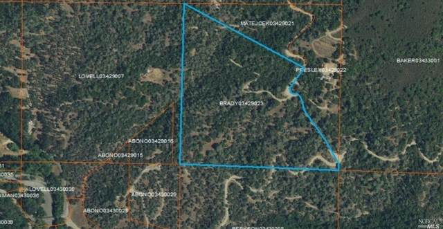 0 Pigeon Ridge, Covelo, CA 95428 (#22019796) :: Corcoran Global Living