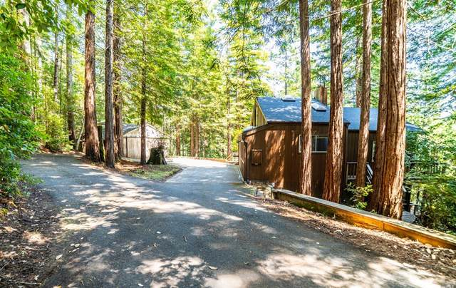 46381 Redwood Way, Gualala, CA 95445 (#22019965) :: Intero Real Estate Services