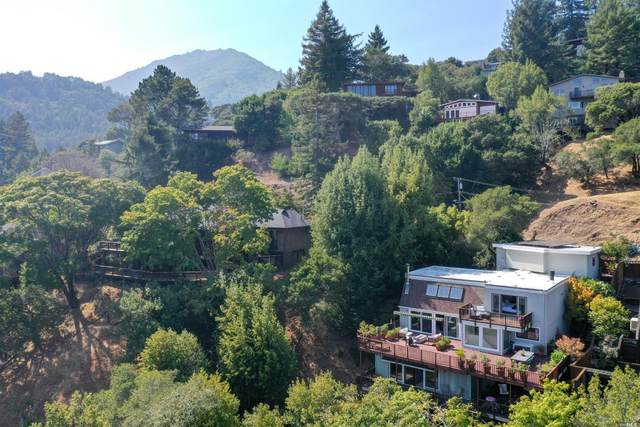 115 Wilson Way, Larkspur, CA 94939 (#22020182) :: Golden Gate Sotheby's International Realty
