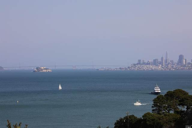 102 Harrison Avenue, Sausalito, CA 94965 (#22021269) :: Golden Gate Sotheby's International Realty