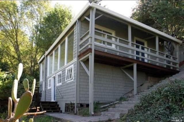 155 Summit Drive, Corte Madera, CA 94925 (#22021422) :: Golden Gate Sotheby's International Realty
