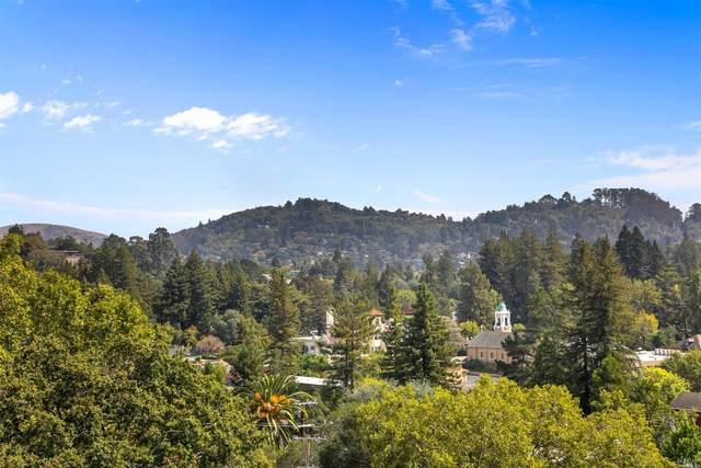 14 Cedar Avenue, Larkspur, CA 94939 (#22021555) :: Golden Gate Sotheby's International Realty