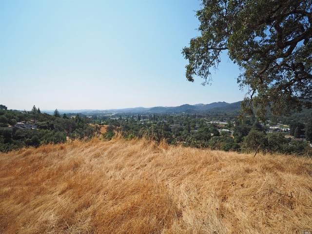 271 Vista View Drive, Cloverdale, CA 95425 (#22021607) :: Golden Gate Sotheby's International Realty