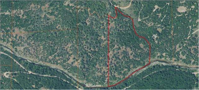 0 Pigeon Ridge Road, Covelo, CA 95428 (#22021991) :: Corcoran Global Living