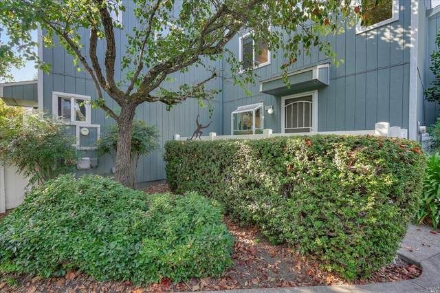 1229 Camino Corto Road, Rohnert Park, CA 94928 (#22022966) :: W Real Estate | Luxury Team