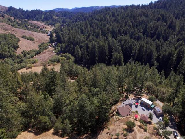 1300 Nicasio Valley Road, Nicasio, CA 94946 (#22023232) :: RE/MAX GOLD