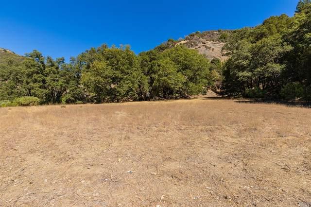 4225 Robinson Creek Road, Ukiah, CA 95482 (#22023338) :: Intero Real Estate Services