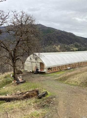 17113-16973 Elk Mountain Road, Upper Lake, CA 95485 (#22023378) :: Intero Real Estate Services