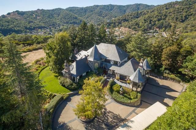 85 Mcnear Drive, San Rafael, CA 94901 (#22023850) :: Golden Gate Sotheby's International Realty