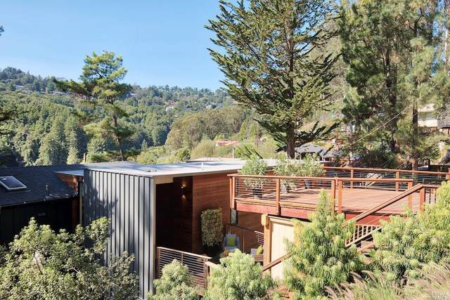 505 Pixie Trail, Mill Valley, CA 94941 (#22025398) :: Corcoran Global Living