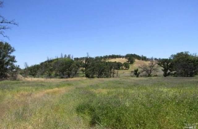 9600 Rocky Creek Road, Lower Lake, CA 95457 (#22025477) :: Corcoran Global Living