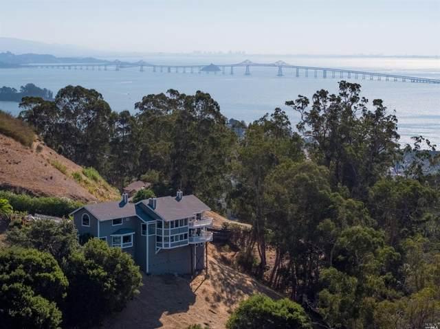 376 Margarita Drive, San Rafael, CA 94901 (#22025504) :: Team O'Brien Real Estate