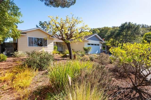 565 Olive Avenue, Novato, CA 94945 (#22025530) :: W Real Estate | Luxury Team