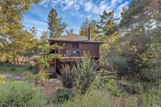 96 Tamarack Road, San Geronimo, CA 94963 (#22025572) :: RE/MAX GOLD