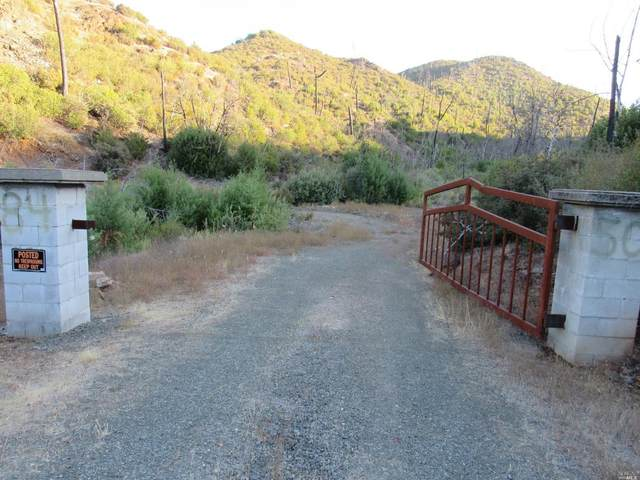 8450 Butts Canyon Road, Pope Valley, CA 94567 (#22025729) :: Hiraeth Homes